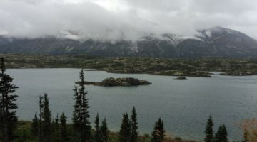Why Cruise to Alaska with Kids - nature and wildlife is unbelievable