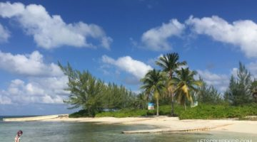 Kid Friendly Beaches in Grand Cayman - see the starfish at Starfish Point