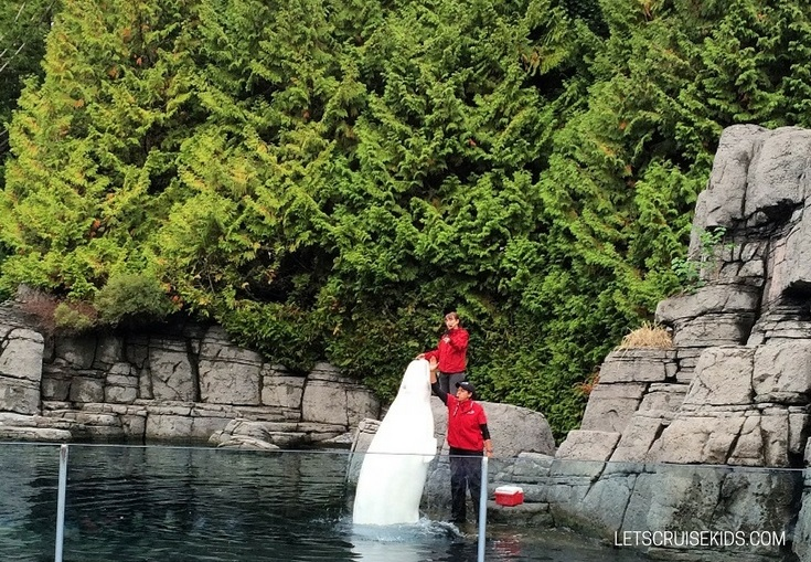 Activities and Attractions for Families Cruising from Vancouver